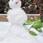 Kein Schnee von gestern – bei job-konzept gibt es viele Neuigkeiten!